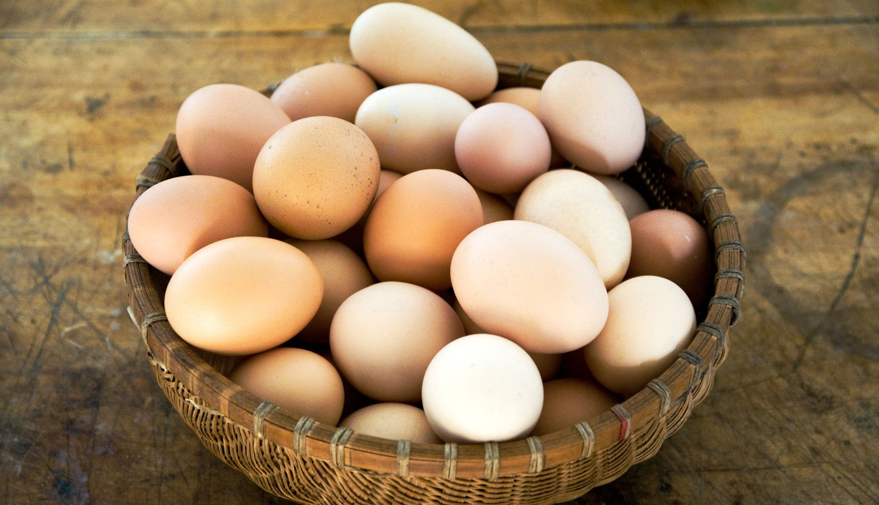 all_the_eggs_in_one_basket